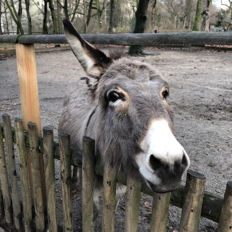 Tierpark Neukölln