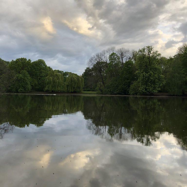 Karpfenteich im Treptower Park